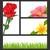 roze · Rood · witte · zomerbloemen · kaart · papier - stockfoto © smeagorl