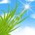 groen · gras · zon · balk · Blur · natuur · tuin - stockfoto © smeagorl