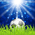 soccer ball on green grass with shine effect stock photo © smeagorl