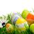 kleurrijk · paaseieren · madeliefjes · gras · hemel · voorjaar - stockfoto © smileus