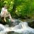 moço · caiaque · cachoeira · esportes · rio · cor - foto stock © smileus