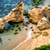 rocky beach with clear water stock photo © smileus