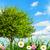 いい · 落葉性の · ツリー · 白 · 美しい · 新鮮な - ストックフォト © smileus