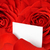 valentine card amidst red roses and petals stock photo © smileus