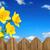 narcissen · voorjaar · oude · houten · blad · zomer - stockfoto © smileus