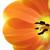 arancione · fiore · isolato · bianco · primo · piano · studio - foto d'archivio © smileus