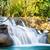 cascada · parque · occidental · Tailandia · agua · árbol - foto stock © smuay