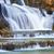 cascada · parque · Tailandia · naturaleza · agua · árbol - foto stock © smuay