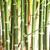 opslaan · bomen · recycleren · papier · hemel · boom - stockfoto © smuay