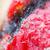 菌 · 成長 · ツタ - ストックフォト © smuay