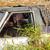 заброшенный · автомобилей · крушение · природы · цвета · Европа - Сток-фото © smuay