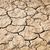 ひびの入った · 土壌 · 湖 · 草 · 自然 - ストックフォト © smuay