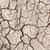planta · secas · rachado · lama · folha · deserto - foto stock © smuay