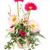bella · rosso · Daisy · fiore · isolato · bianco - foto d'archivio © smuay