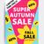 eye catching design autumn sale stock photo © softulka