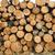 ağaç · orman · model · modern · yapı - stok fotoğraf © solarseven
