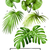 tropical vector palm leaves stock photo © solarseven