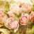 vintage · doek · steeg · print · afbeelding · bloem - stockfoto © sophie_mcaulay