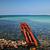 пляж · Украина · изображение · природы · металл · красоту - Сток-фото © sophie_mcaulay