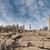 templom · romok · Luxor · Egyiptom · épület · város - stock fotó © sophie_mcaulay