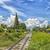 spoorweg · track · afbeelding · dramatisch · bewolkt · hemel - stockfoto © sophie_mcaulay