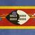 grunge · Szváziföld · zászló · vidék · hivatalos · színek - stock fotó © speedfighter