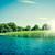 idilli · tó · kék · víz · zöld · fák - stock fotó © Sportactive
