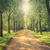 sikátor · zöld · park · tájkép · hosszú · égbolt - stock fotó © Sportactive