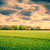 tájkép · sötét · felhők · vidék · mező · háttér - stock fotó © Sportactive