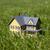 pequeño · amarillo · casa · hierba · verde · hierba · construcción - foto stock © sqback