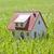 pequeño · casa · hierba · verde · hierba · construcción · casa - foto stock © sqback