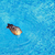 seagull in the pool stock photo © srnr