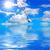 battant · mouette · mer · baltique · plage · Pologne · ciel - photo stock © srnr