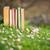 kitaplar · eski · çim · kâğıt · bahar · orman - stok fotoğraf © Steevy84