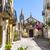 старый · город · Церкви · подлинный · Италия · цветы - Сток-фото © Steffus