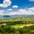 montenegro rural landscape stock photo © steffus