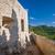 kasteel · oude · berg · dorp · meer · park - stockfoto © steffus