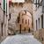 Old mediterranean town streets stock photo © Steffus