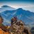 вулканический · гор · пейзаж · Канарские · острова · Испания - Сток-фото © Steffus