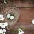 deux · bois · résumé · fleurs · feuille · anniversaire - photo stock © stephaniefrey
