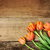 orange tulips over wood table top stock photo © stephaniefrey