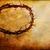 корона · изображение · вверх · колючую · проволоку · белый · дизайна - Сток-фото © stephaniefrey