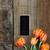 antiguos · tijeras · tulipanes · tiro · ramo · naranja - foto stock © stephaniefrey