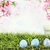 easter eggs in grass stock photo © stephaniefrey