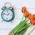 tijd · verandering · daglicht · spaargeld · wekker · kleurrijk - stockfoto © stephaniefrey