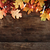 fall leaves and lights over wooden background stock photo © stephaniefrey