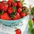gyönyörű · érett · eprek · makró · lövés · étel - stock fotó © stephaniefrey