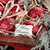 merry christmas gift tag stock photo © stephaniefrey