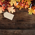 fall leaves over wooden background stock photo © stephaniefrey