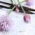 yüksek · anahtar · çiçekler · çiçek · su - stok fotoğraf © stephaniefrey